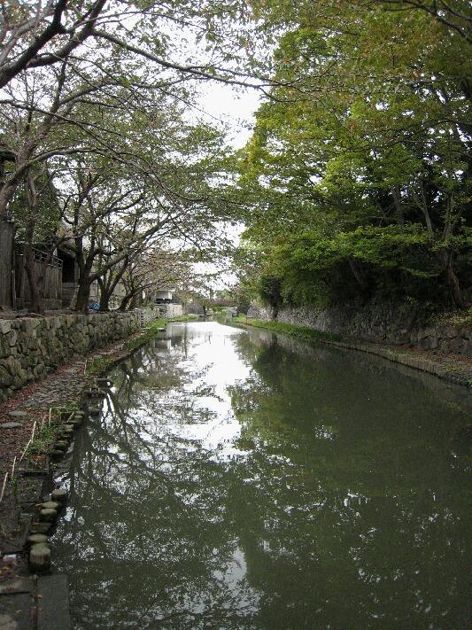 IMG_1723近江