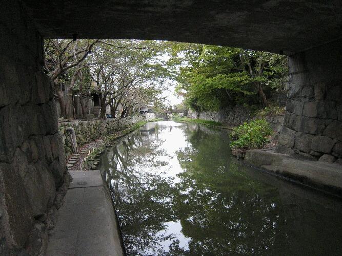 IMG_1722近江
