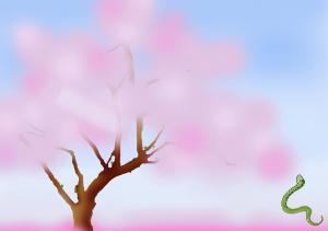 ハル君桜2のコピー2