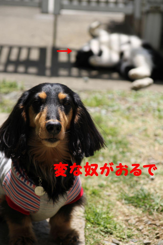 yuta20110418-3.jpg