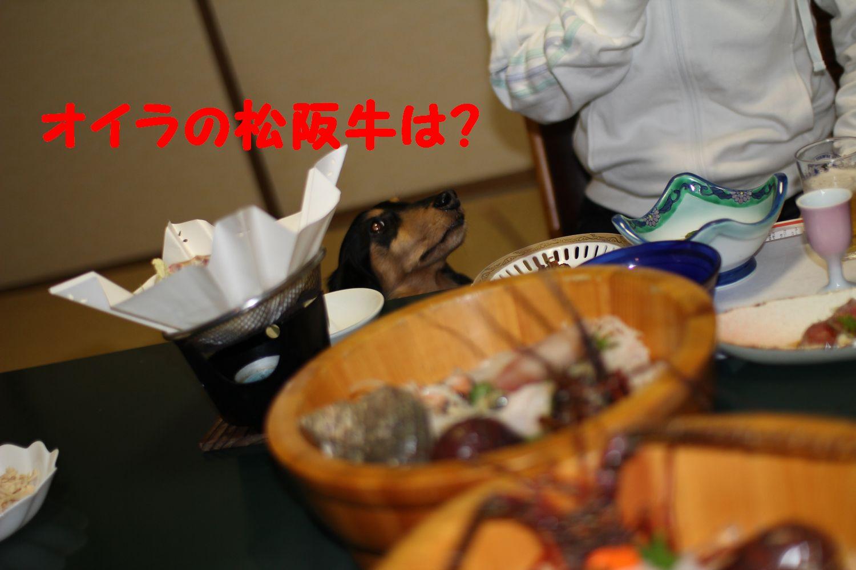 yuta20110506-6.jpg
