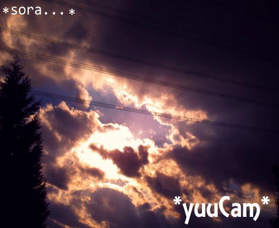 201110060284_convert_20130130143324.jpg