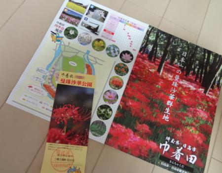 2012.10.8巾着田