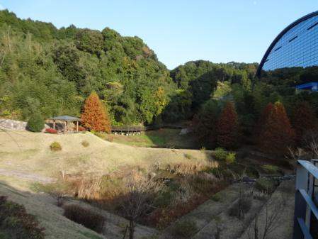2012.11.22大宰府5