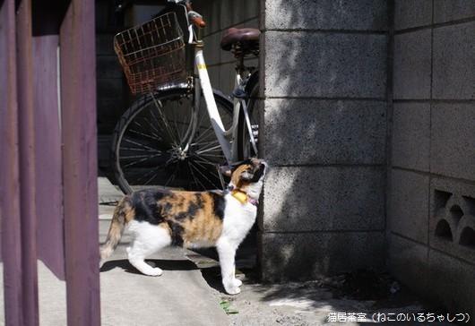20100927_blog3.jpg