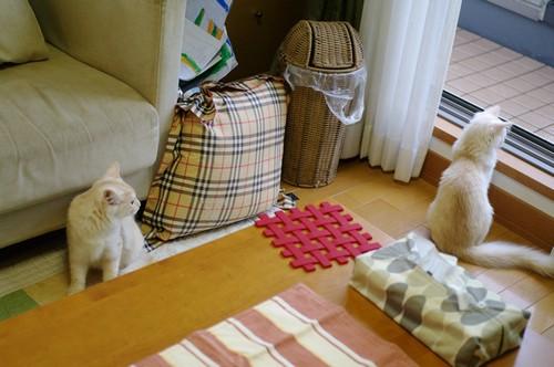 20101010_blog3.jpg