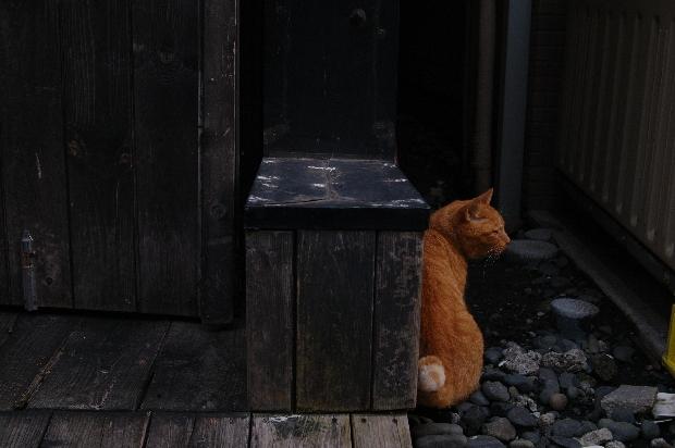20110807_blog11s.jpg