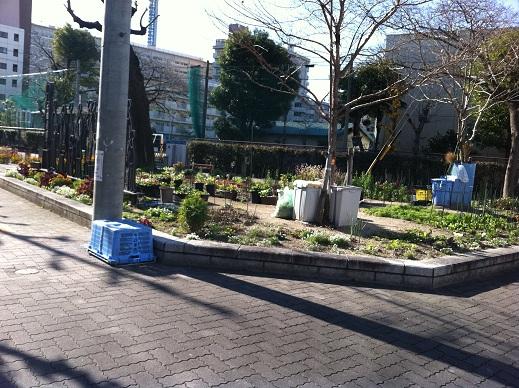 名古屋市内公園