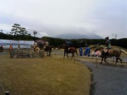 仙巌園-流鏑馬やぶさめ1