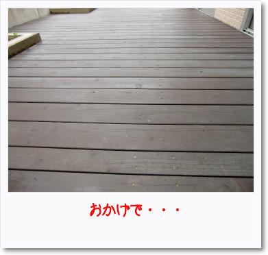 [photo31173389]CIMG1059