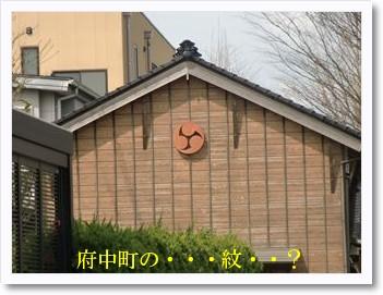 [photo19190504]CIMG1354_R