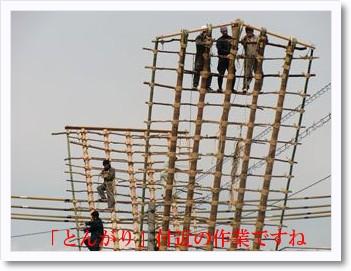 [photo19190242]CIMG1355_R