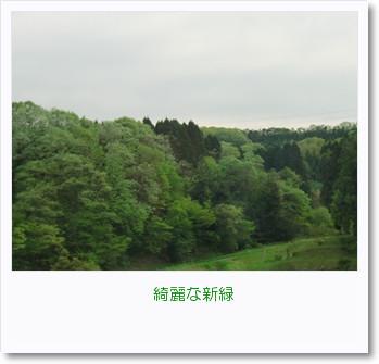 [photo11090073]CIMG1939_R
