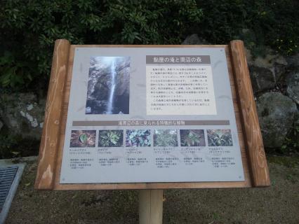 鮎屋の森-7
