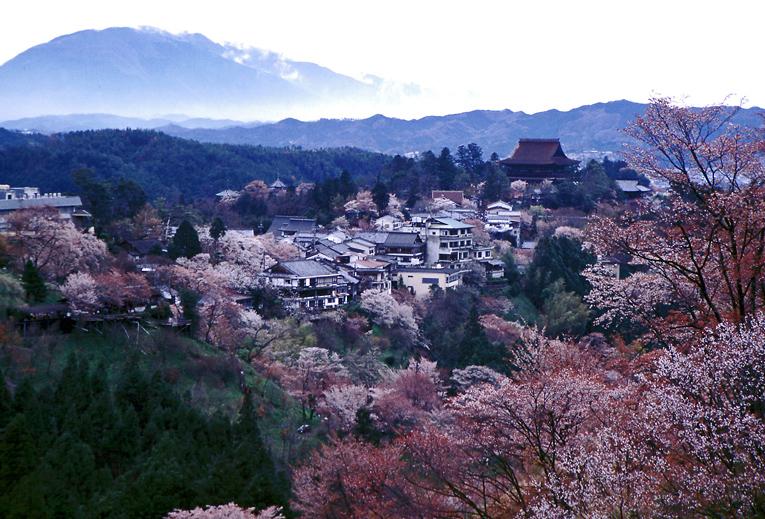 吉野山03