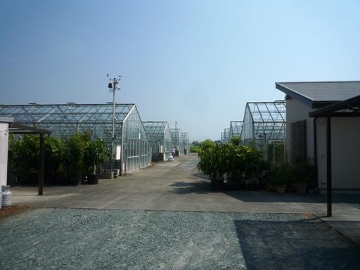 パンの郷&名倉メロン農園1108 (9)
