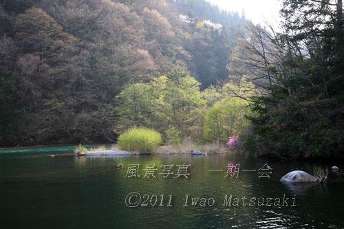 川辺の早春