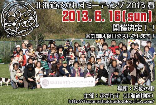 ミーティング2013春フライヤー_1