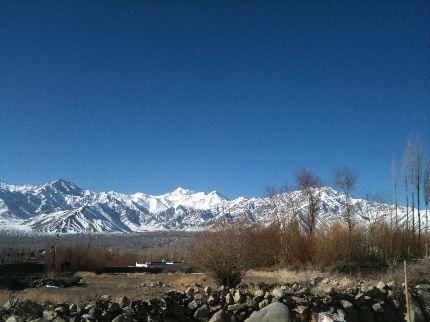 2013 Feb Blog (10)