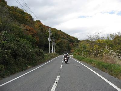 2010103137.jpg