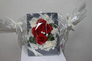 IMG_0313.jpg