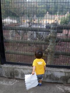すータン多摩動物園