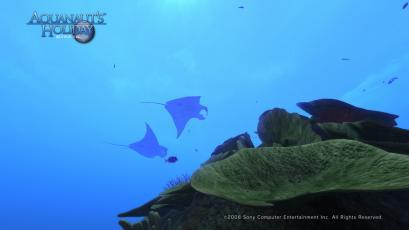AquaPhoto 静かの海にて撮影10