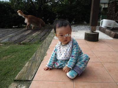 014_convert_20101005190346[1]