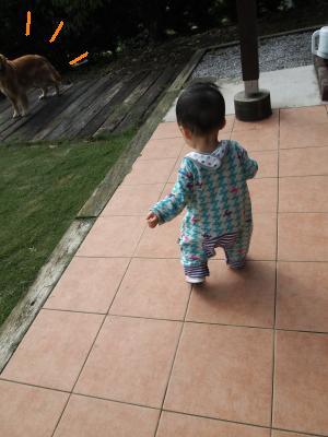 012_convert_20101005190042[1]