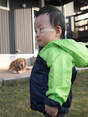 013_convert_20101201201457[1]