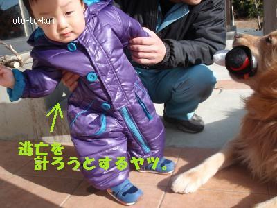 076_convert_20110110212347[1]