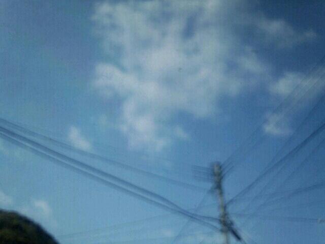 2013-04-12sora.jpg