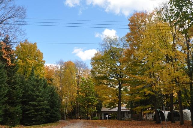 @Cottage18-12Oct14.jpg