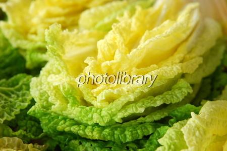 732074 白菜