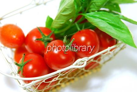 879458 カゴ入りトマト