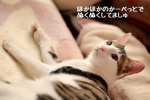 fc2blog_20141223011612561.jpg