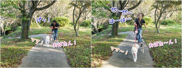 20141008_4.jpg