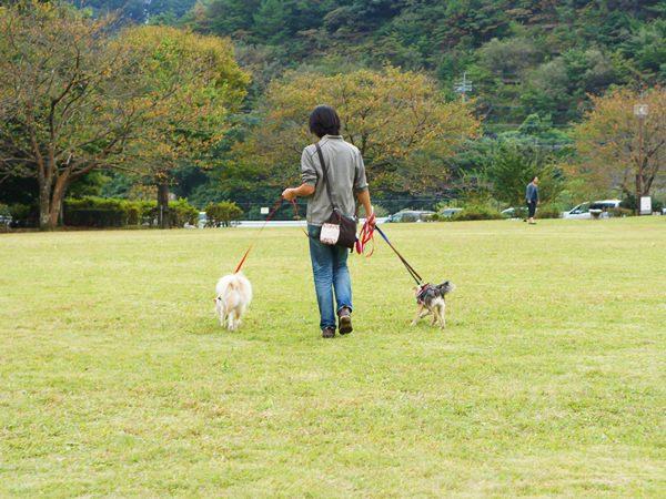 20141014_5.jpg