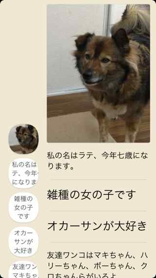 Dots_06.jpg