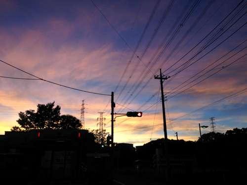 Latte355_03.jpg