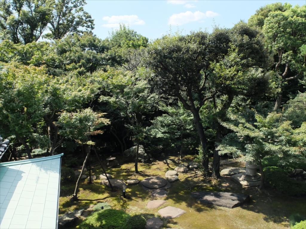 その昔は木々の向こうに富士山が望めたようだ