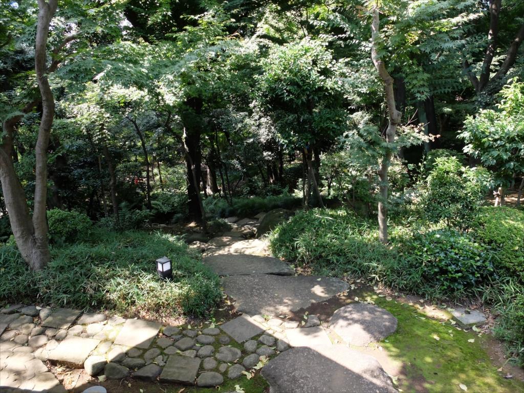 ここから見る庭も風情あり_2