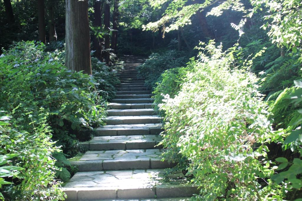 ここから参道の石段が始まる_1