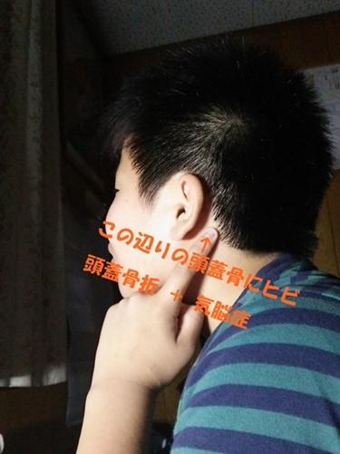 DSC_01461.jpg