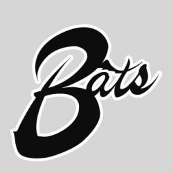 Bats baseball