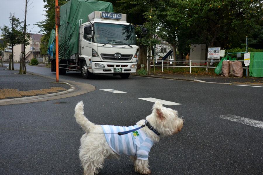 kenchikurushdayone2.jpg