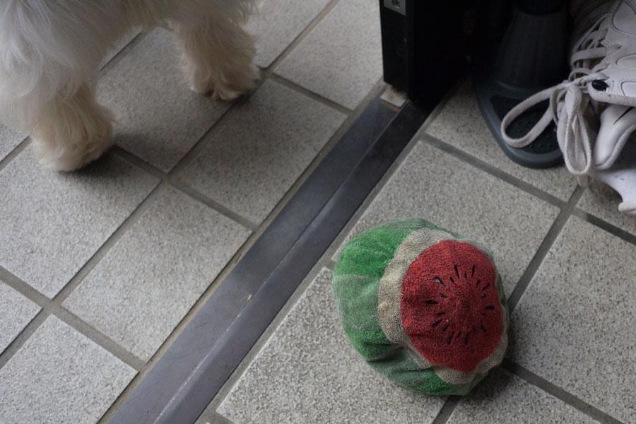 yobinosuikagaarukotowosiranai1.jpg