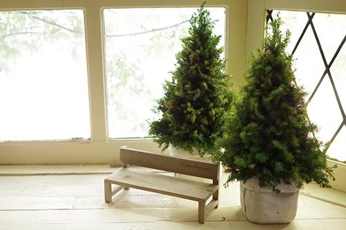 ヒムロスギのプリザーブで制作したナチュラルなクリスマスツリー
