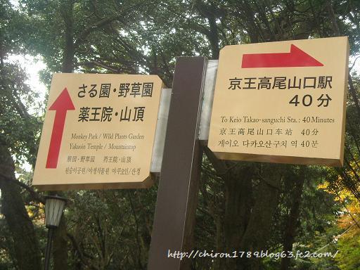 2010年高尾山パート2-1