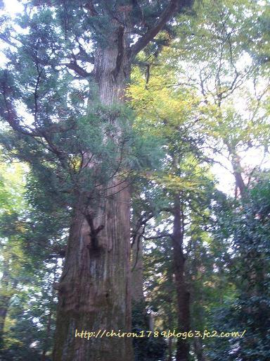 2010年高尾山パート3-13